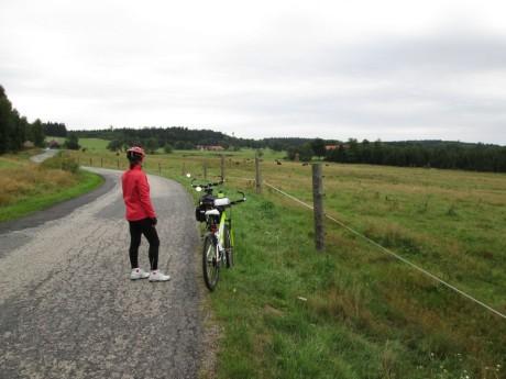 Bizoní farma v Rožnově