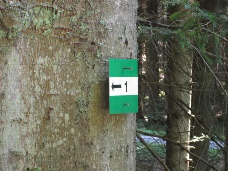 Značka na stromě