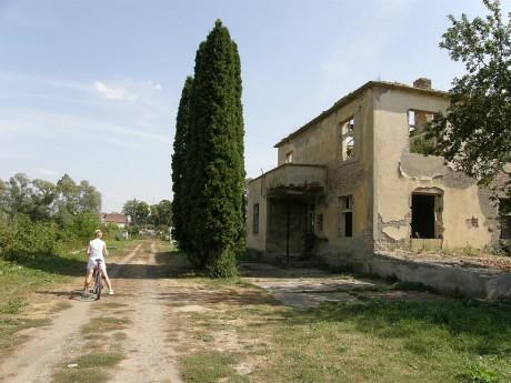Petov 2008