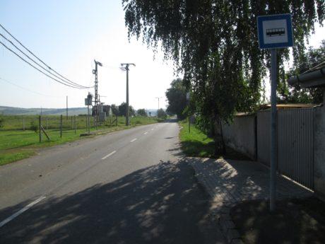 ludanyhalaszi2
