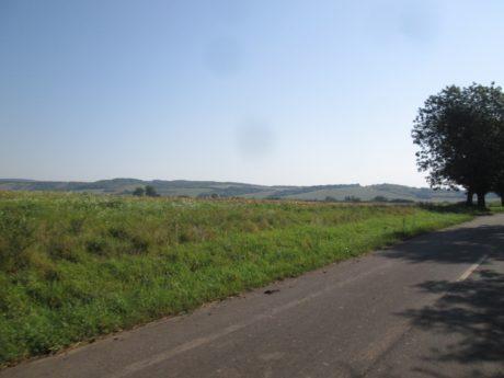 ludanyhalaszi